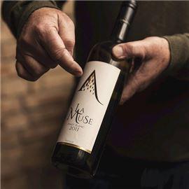 Salabka Winery